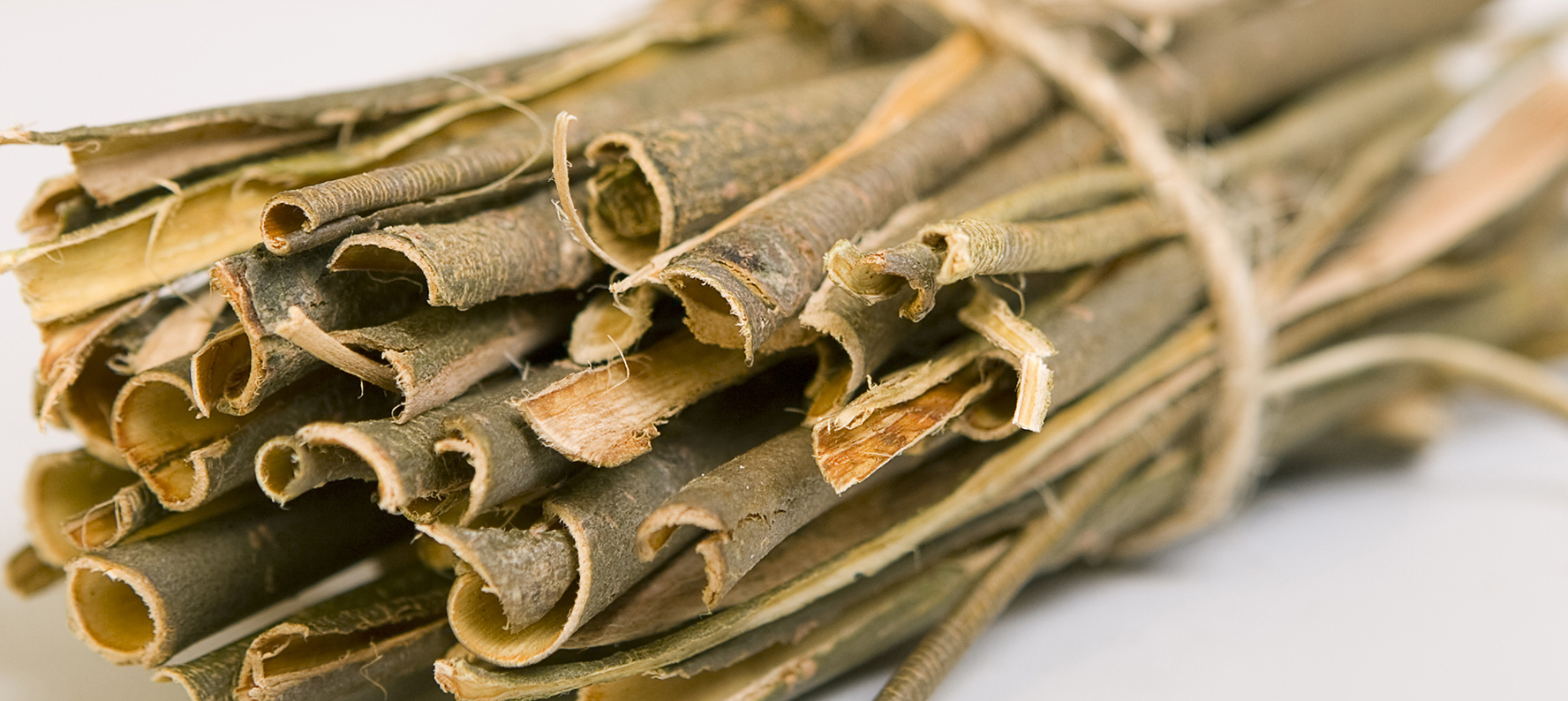 White willow bark is used in natural skin care products for its antioxidant, antimicrobial, astringent, anti aging, and anti-inflammatory properties.
